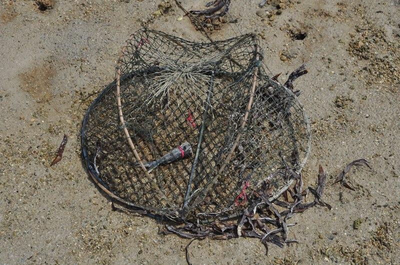 mar 07 4477 baited trap