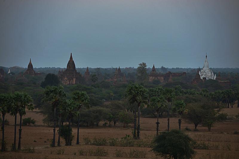 mar 08 1115 dusk pagodas