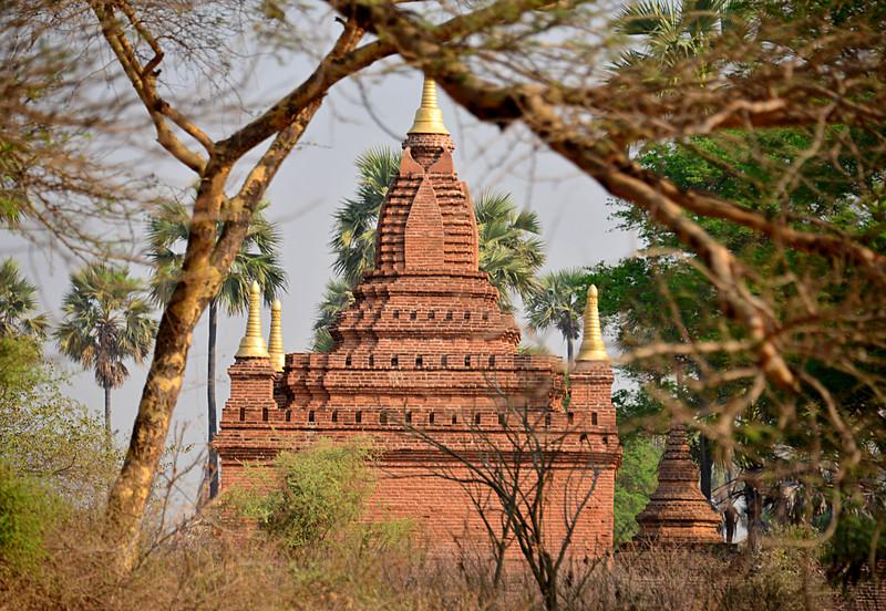 mar 09 1176 overgrown pagoda