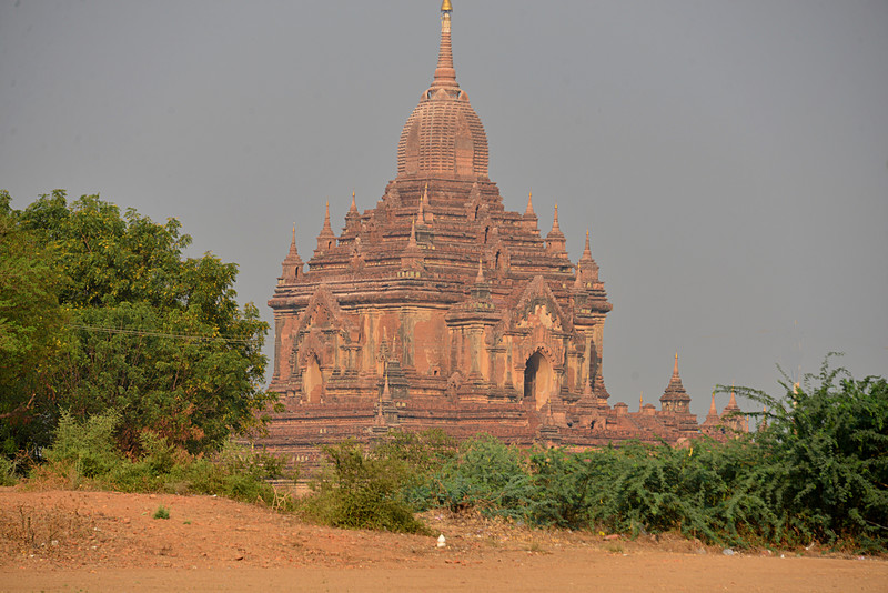 mar 09 1182 pink pagoda