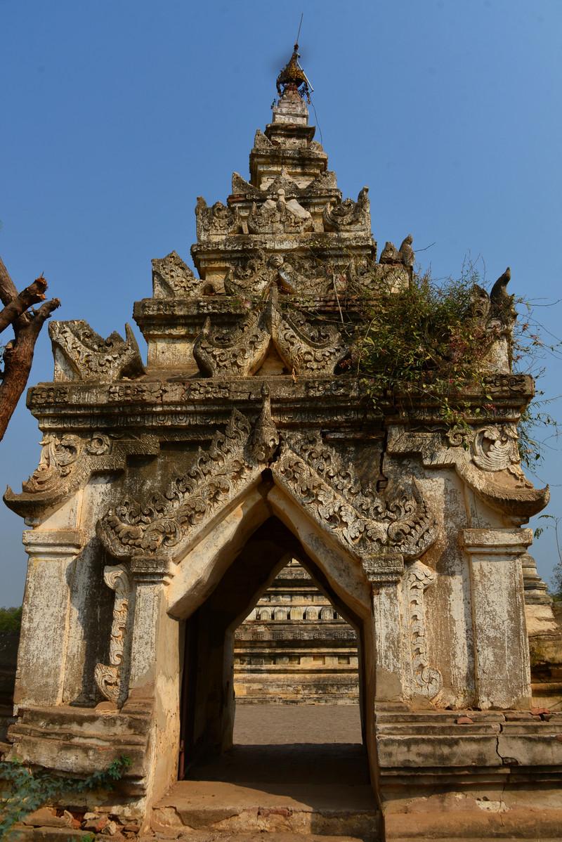mar 09 1260 pagoda weeds