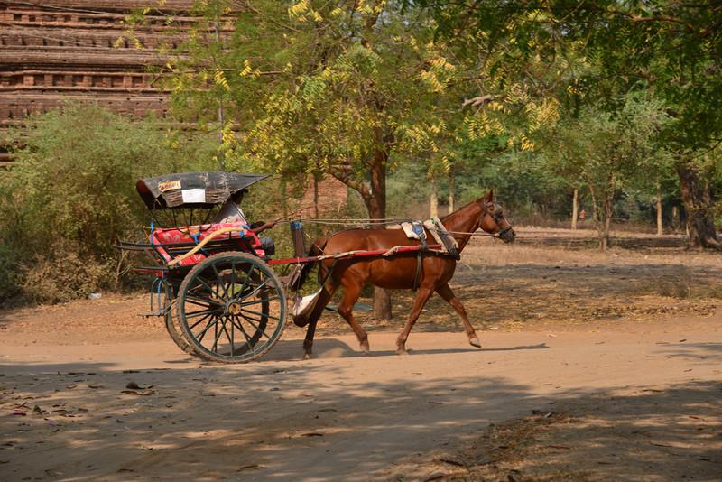 mar 09 1265 horse cart