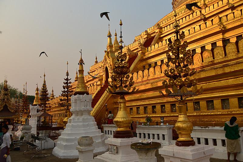 mar 10 1339 stupa pigeons