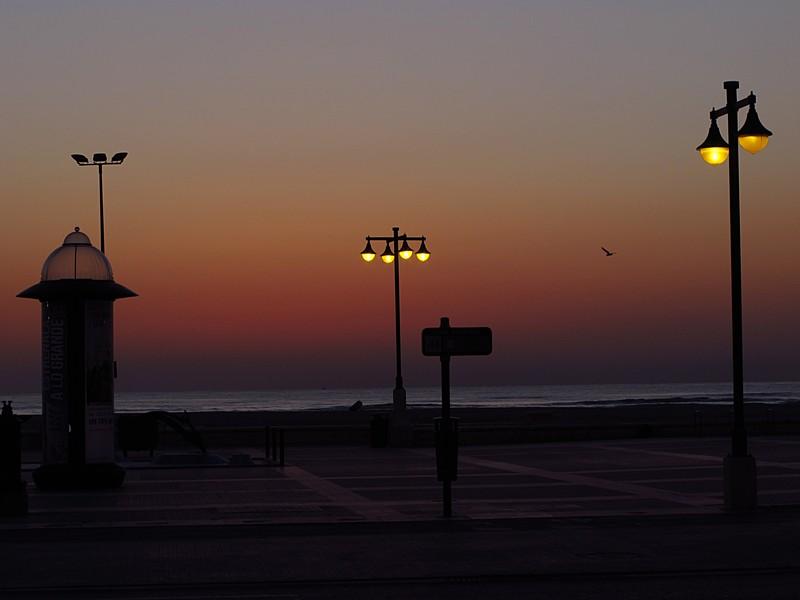 mar 11 3092 dawn