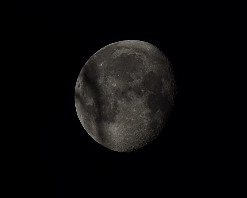 mar 11 8265 moon branch