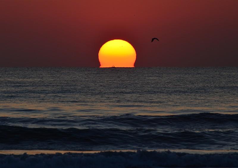 mar 11 8296 sunbird fisherman