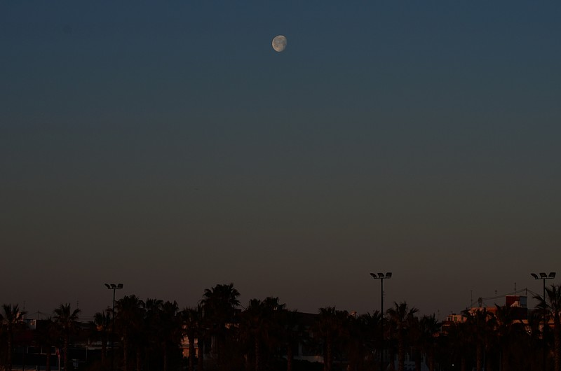 mar 11 8373 morning moon
