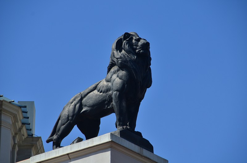 mar 15 8544 aslan
