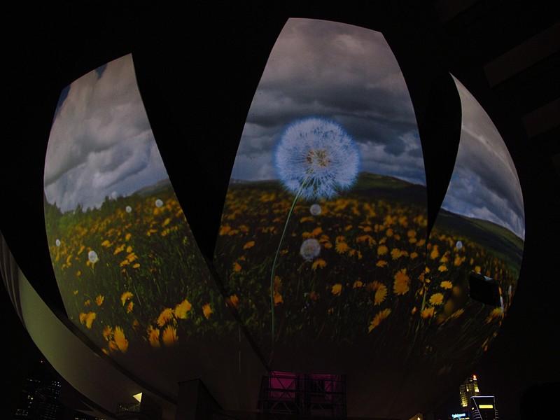 mar 23 4192 lotus field