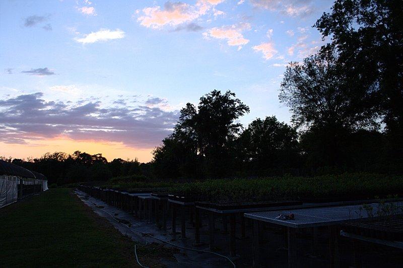 mar_29_2064_sunset.jpg