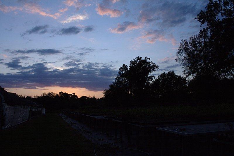 mar_29_2068_sunset_platforms.jpg