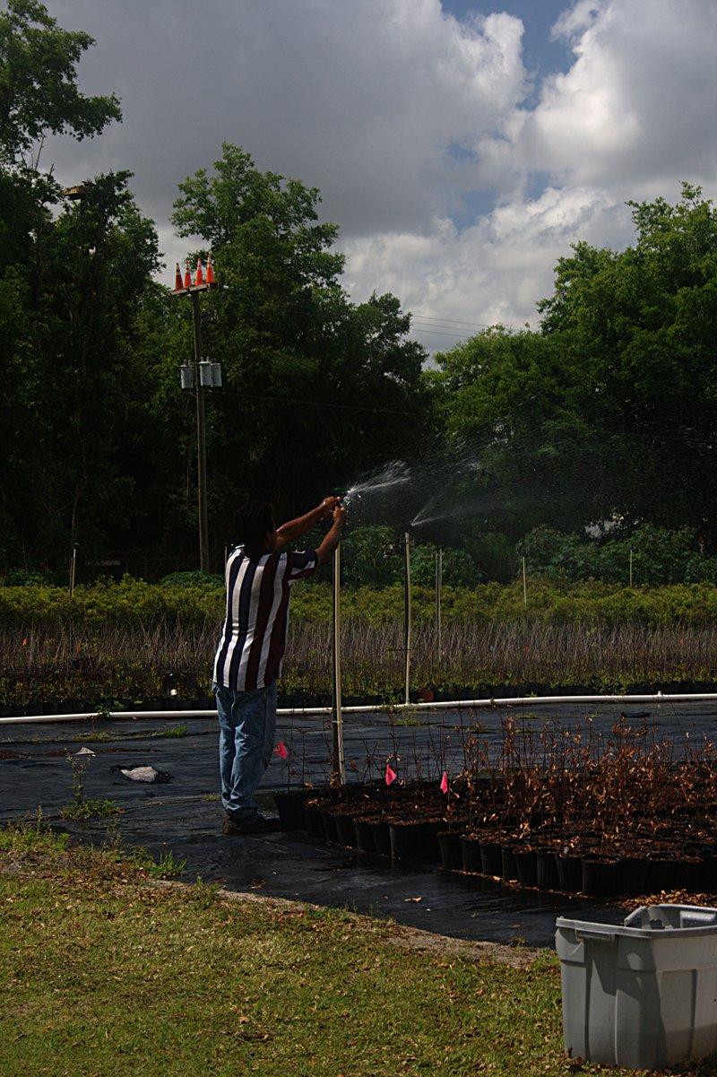 mar 31 2231 sprinker repair