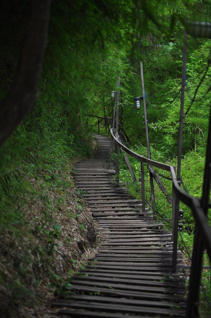 may 16 5500 steps