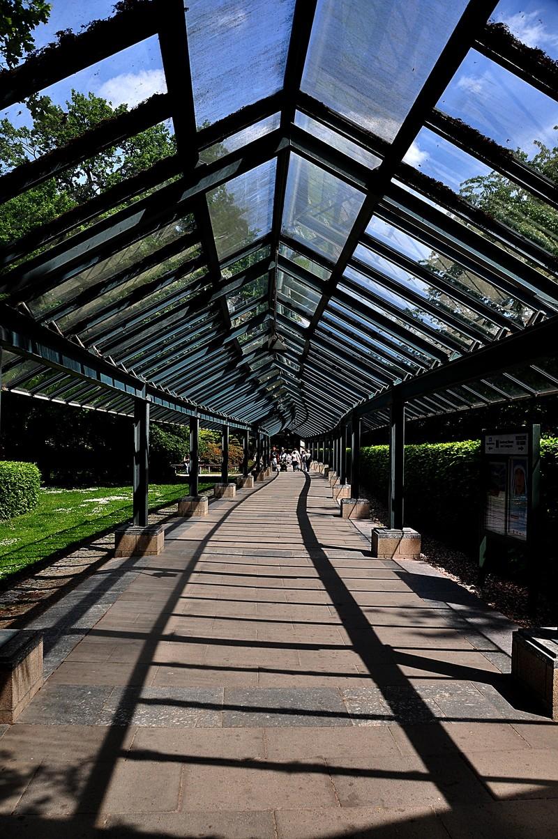 may 29 5675 shadow walkway