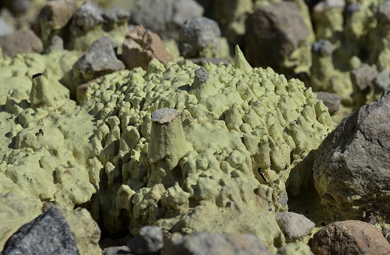 nov 16 0984 sulfur evap