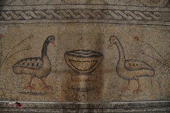 nov 18 1806 mosaic