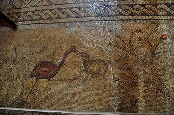 nov 18 1817 mosaic