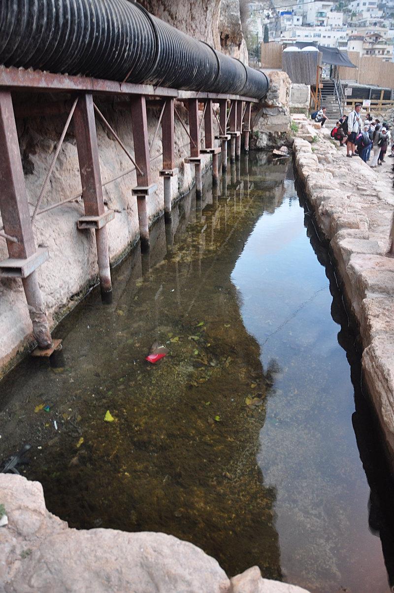 nov 20 2800 shiloach pool