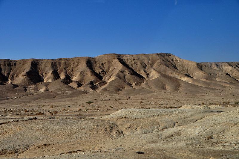 nov 25 4373 desert