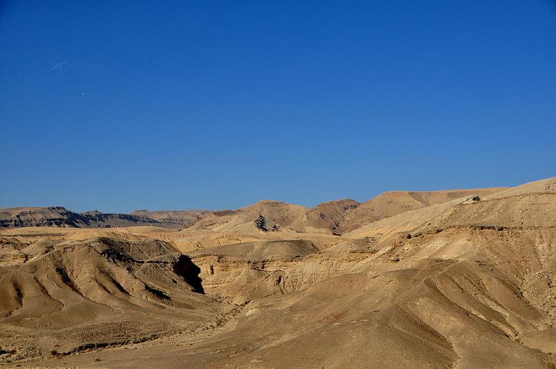 nov 25 4376 desert