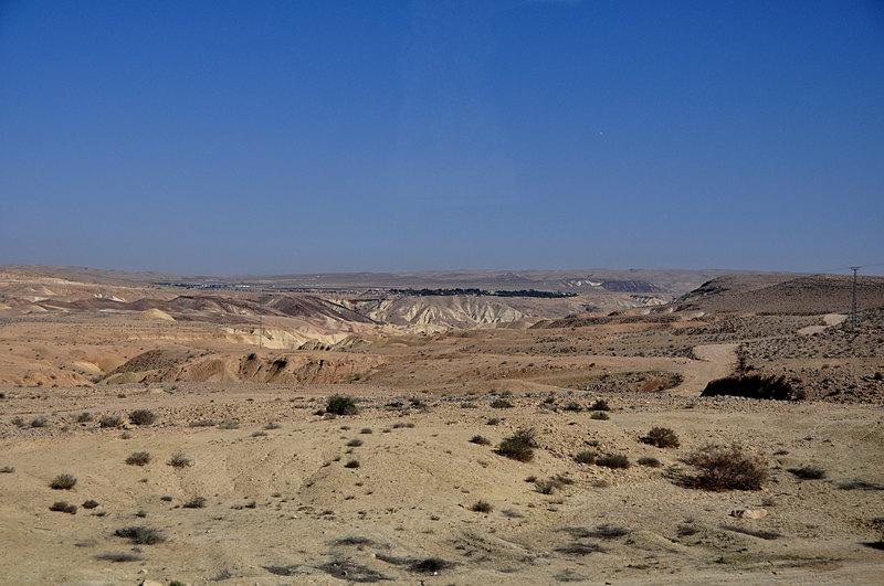 nov 25 4496 desert