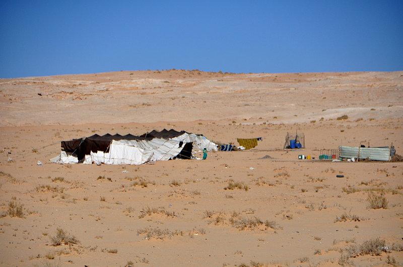nov 26 5229 tents