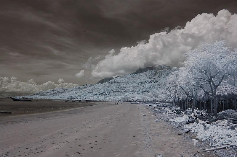 nov 26 9456 barrys beach