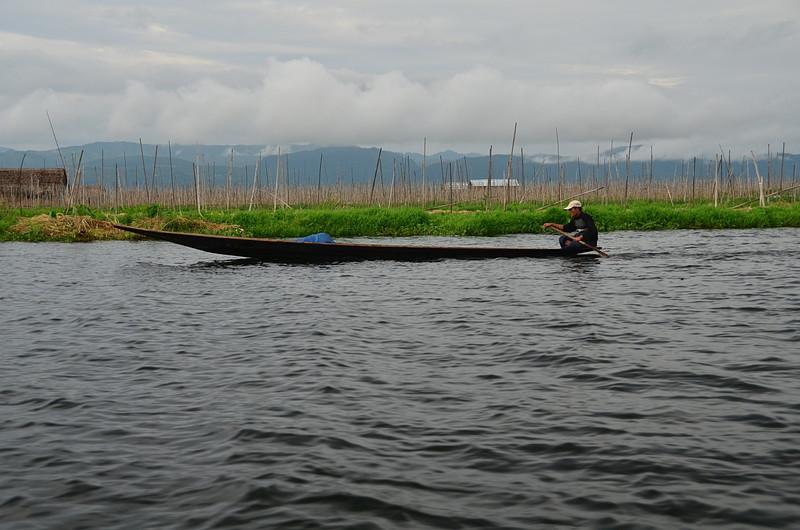 oct 12 0739 canoe tomato stakes