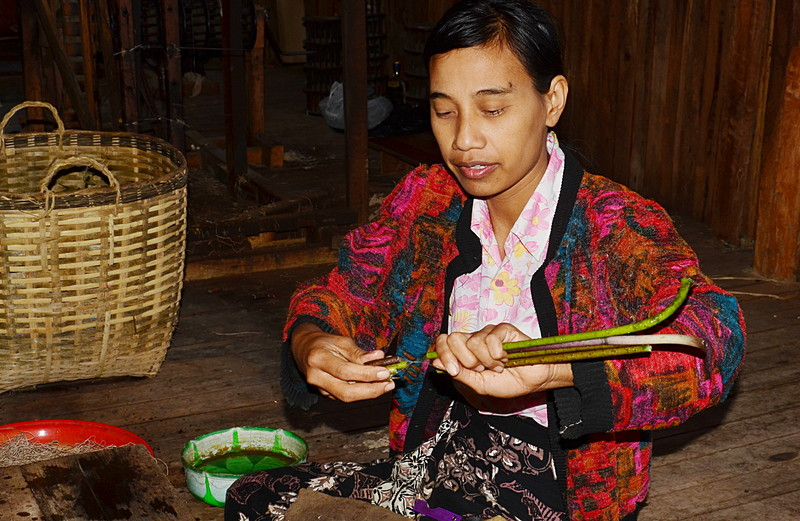oct 12 1173 extracting lotus thread