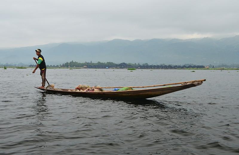 oct 14 2159 leg paddle