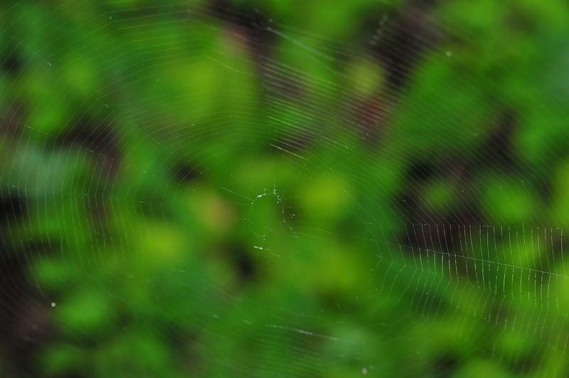 oct 19 2530 neoscona web
