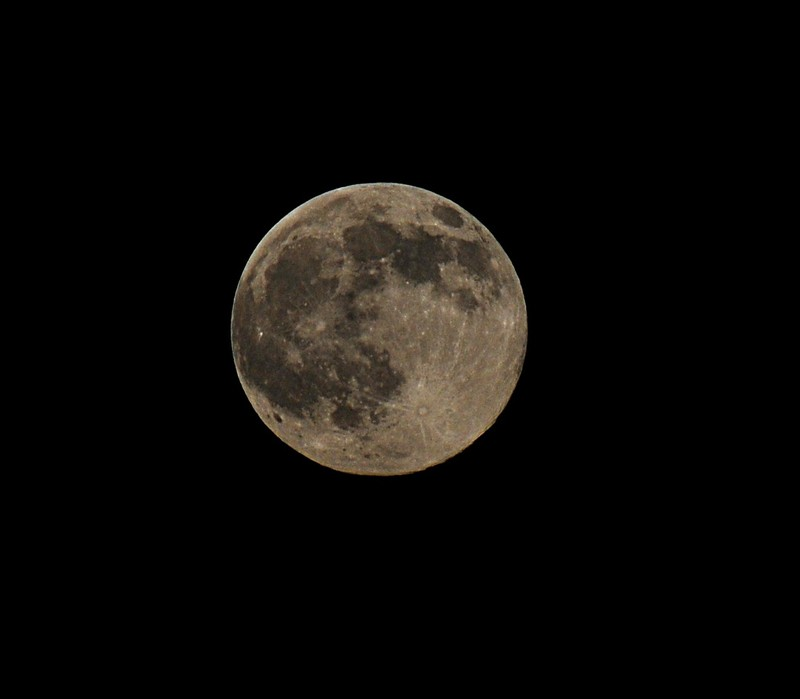 moon essay Here is your short paragraph on moon  the only natural satellite of earth is the moon just as the earth rotates around the sun, the moon rotates around the earth on.