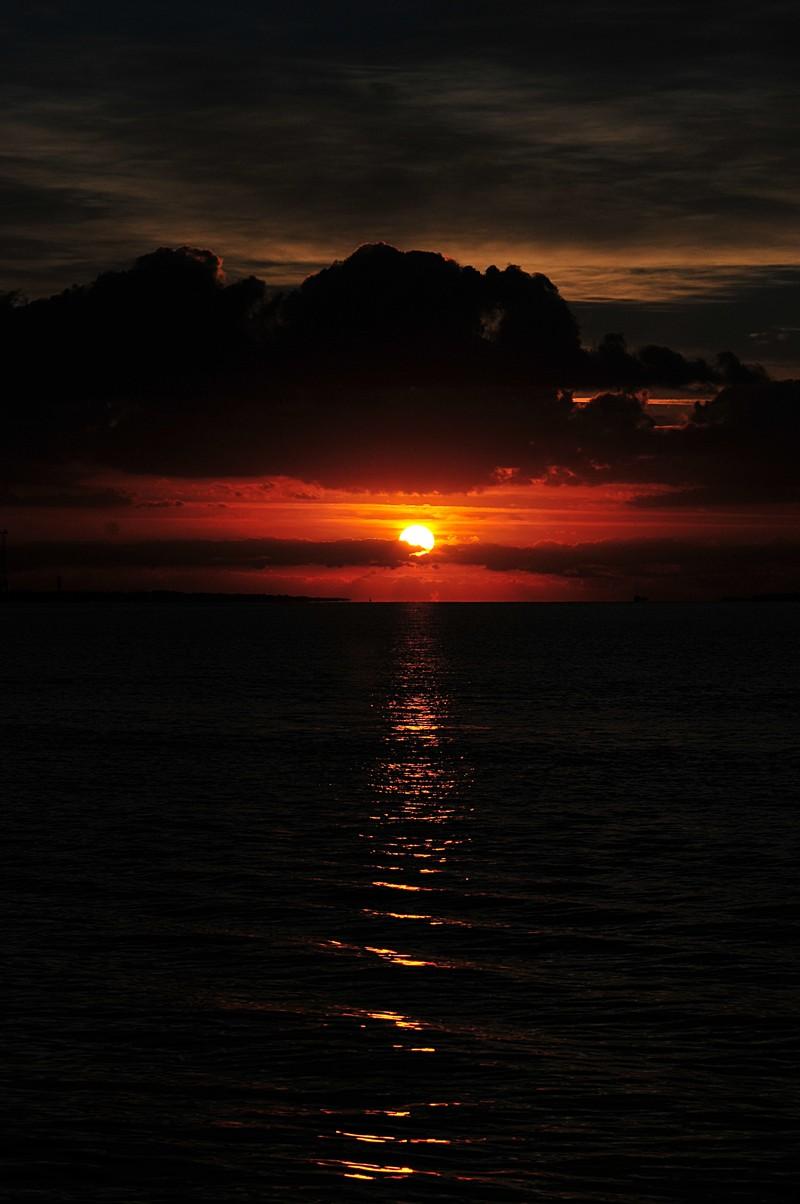 oct 24 3662 sunbeam