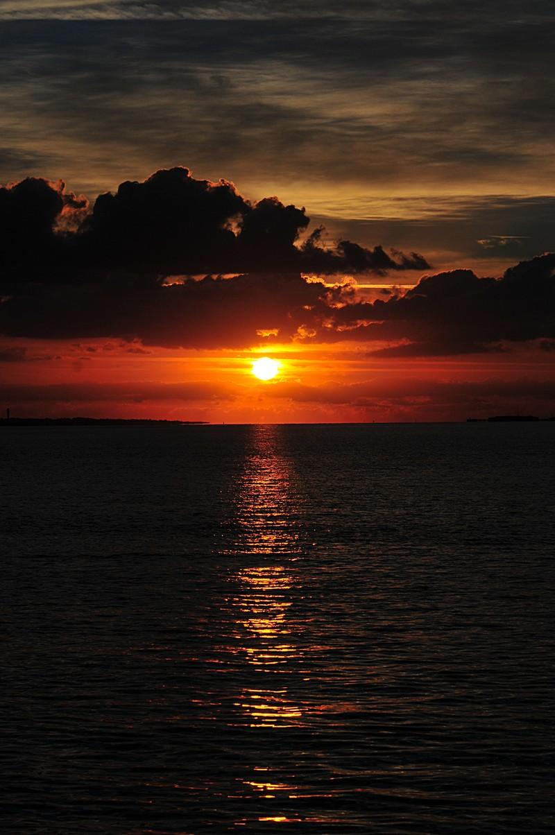 oct 24 3693 sunbeam