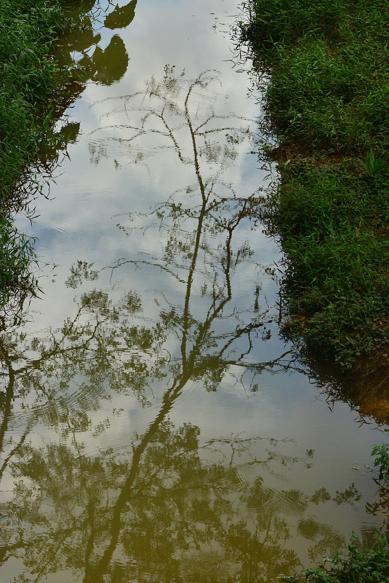 sep 14 6631 reflections
