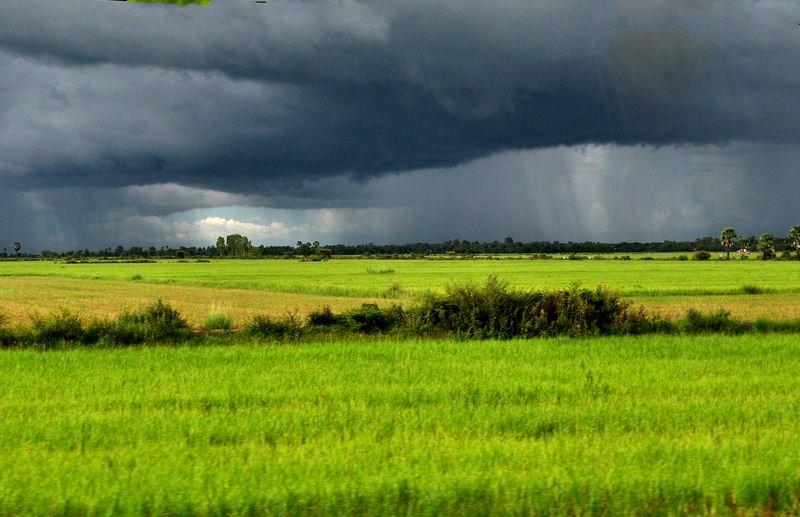 sep 17 rain field