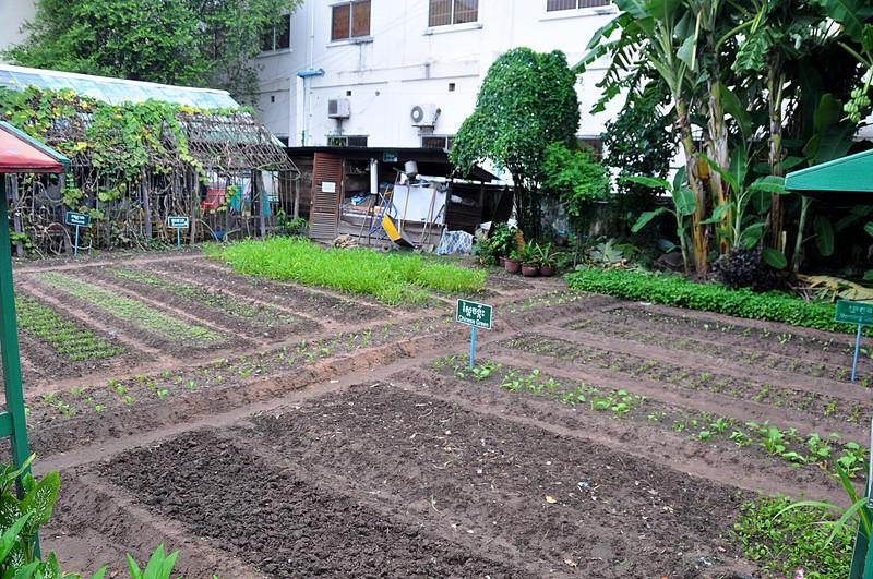sep 18 9009 demo garden