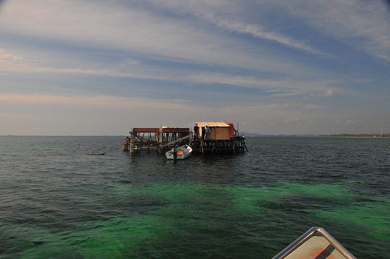 sep 27 0842 low tide kelong