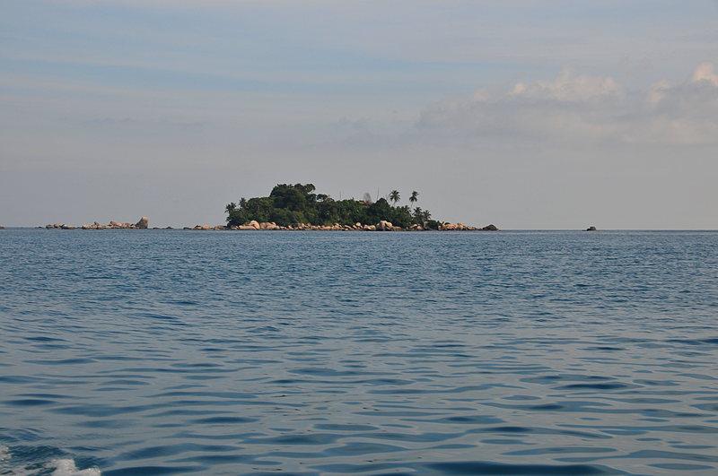 small island essays The narration of small island is shared between four characters: hortense joseph (nee roberts), her husband gilbert, their landlady queenie bligh (nee buxton) and queenie's husband bernard.