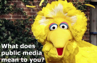 big bird tell us why public media matters to you