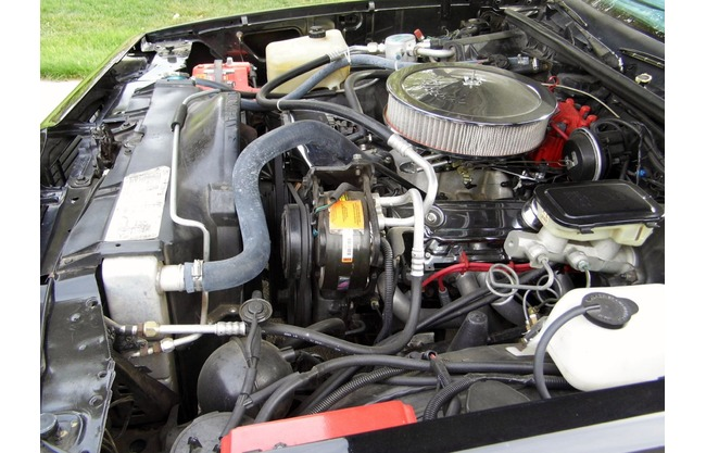 Best Mileage Trucks >> 1987 Chevrolet El Camino Pickup Small Block V8 Engine Swap for sale | Hotrodhotline | 67546