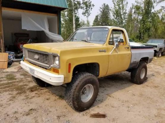 1973 Chevrolet C10 Pickup for sale in Call for Location, MI - $4,995