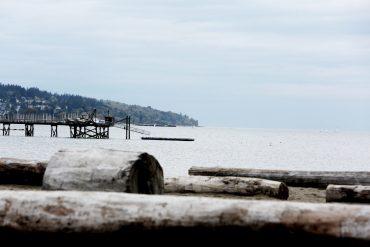 Life-of-Pix-free-stock-trunks-sea-mountain-LEEROY-1440x960