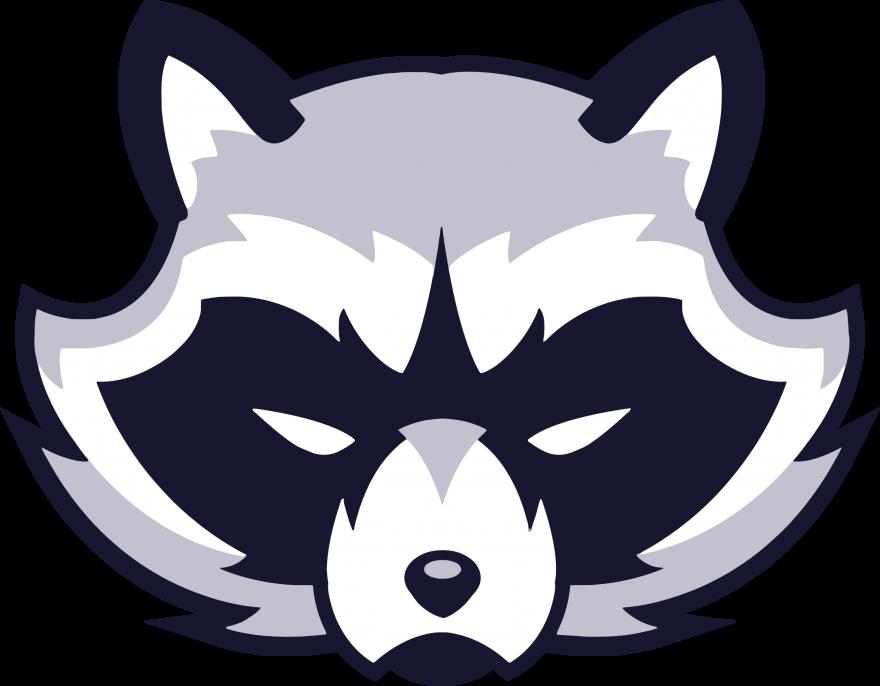 Raccoon Face Vector Clipart
