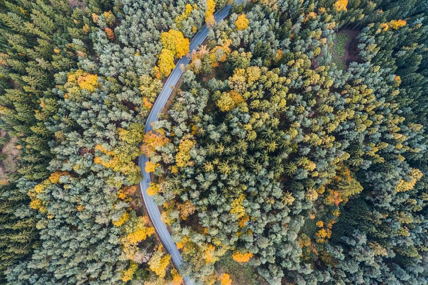 drone finder with Lonely Road In Woods Aerial From Above on Get Temporary Access To Your Mac Os X Library Folder When You Need It Os X Tips as well 6116926323 as well Category pathway 19 moreover 6233432090 besides Lonely Road In Woods Aerial From Above.