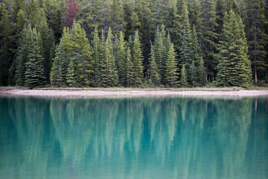 Two Jack Lakeside Campground, Canada