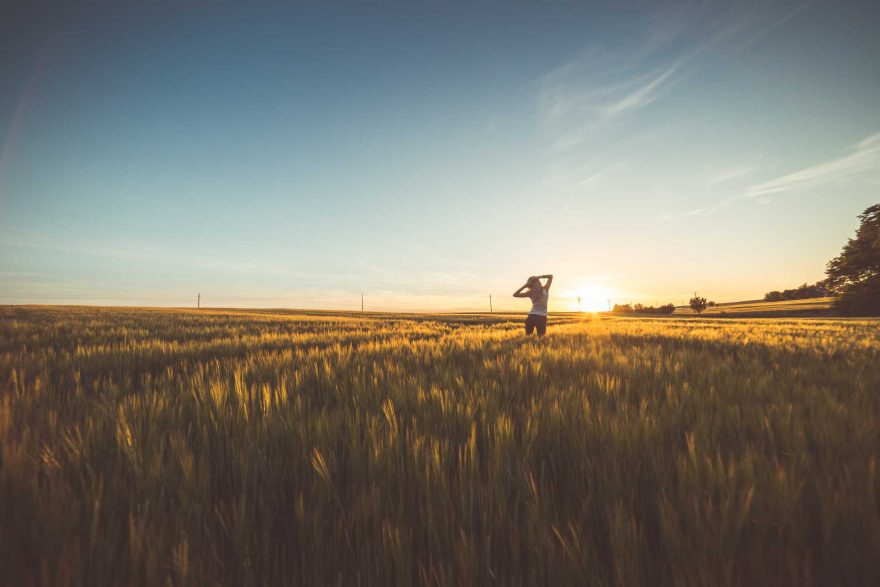 Happy Girl Dancing in a Wheat Field on Sunset #2