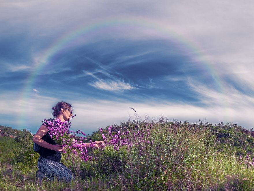 Woman picking purple flowers under the clouds and sky
