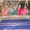 Budhimaa Group
