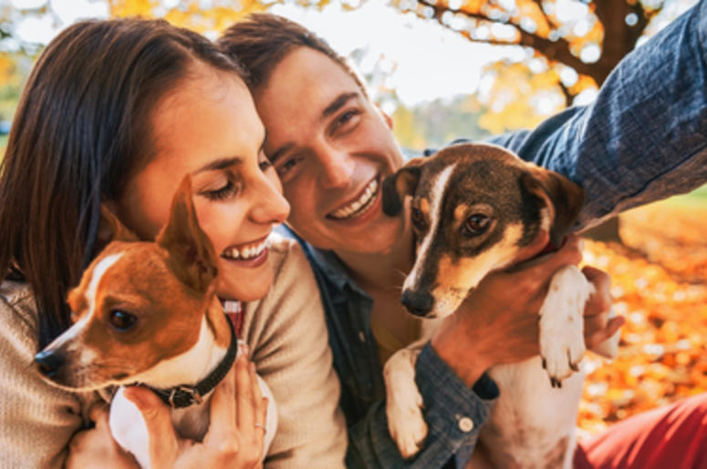 animal lovers dating site